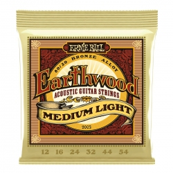 Ernie Ball 2003 Earthwood